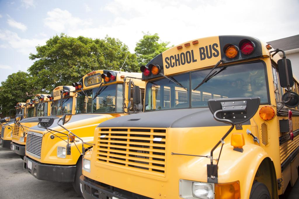 School buses lined up