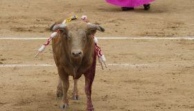 Bullfighting festival at Las Ventas bullring in Madrid