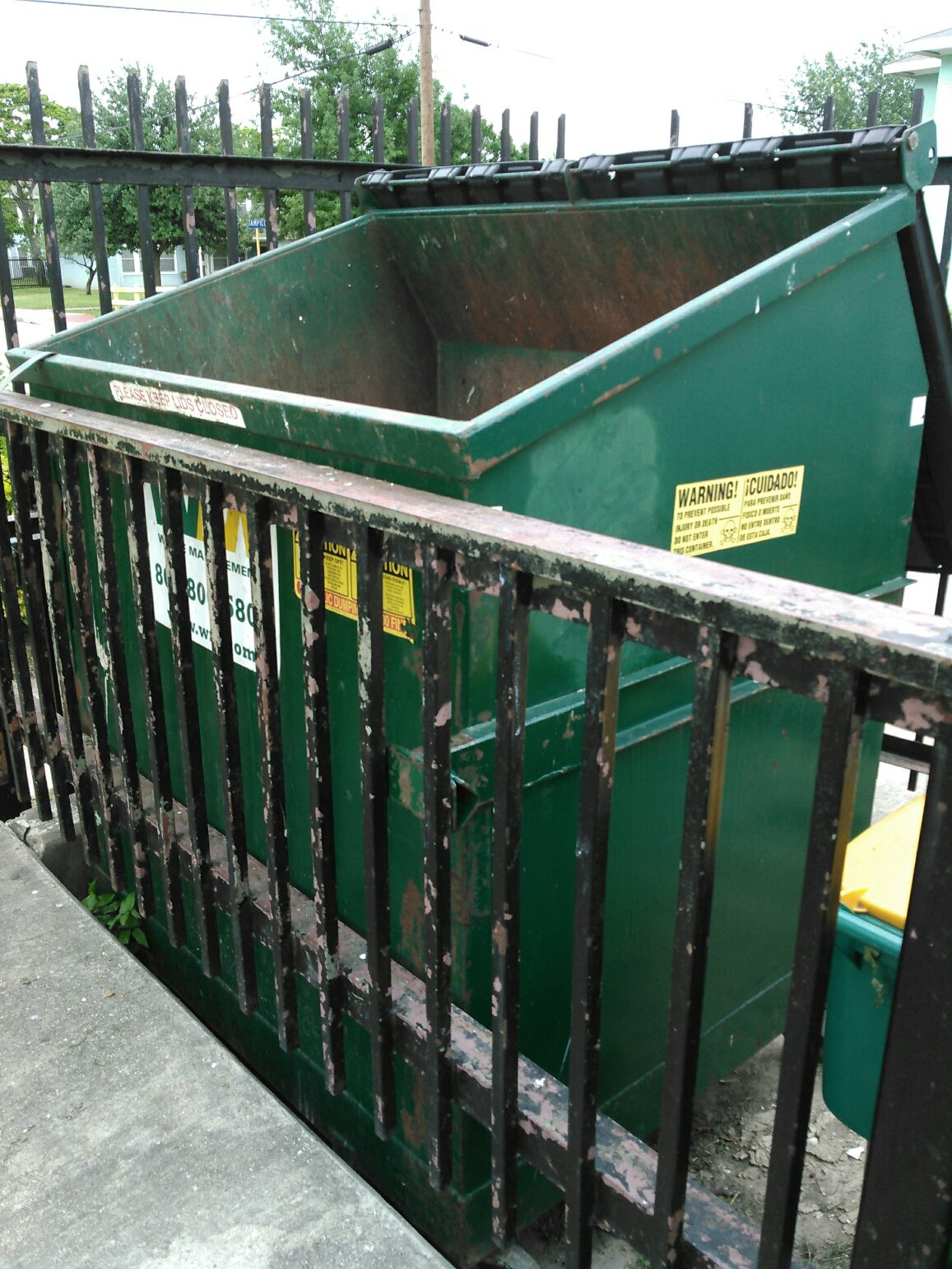 Dumpster Dog Is Rescued With Moments To Spare